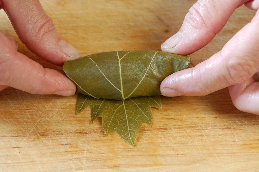 Warp leaf 5