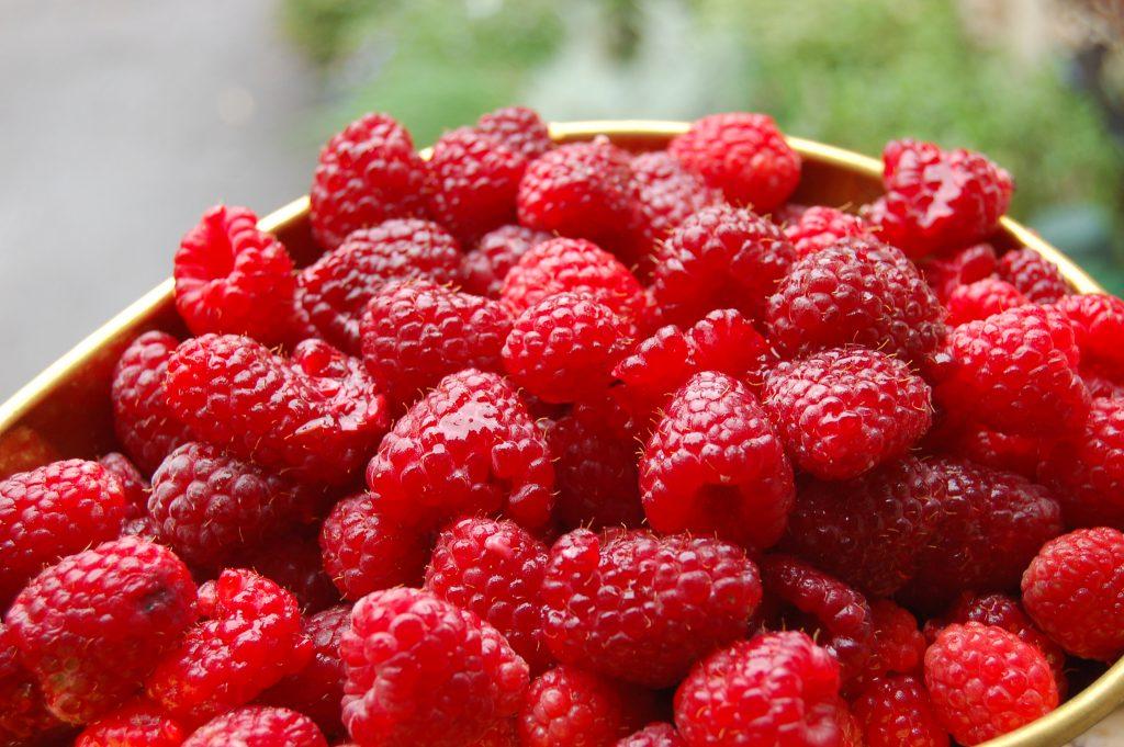 freshly-picked-raspberry-joan-j